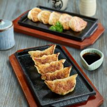 Pork  Chicken Teppan Gyoza